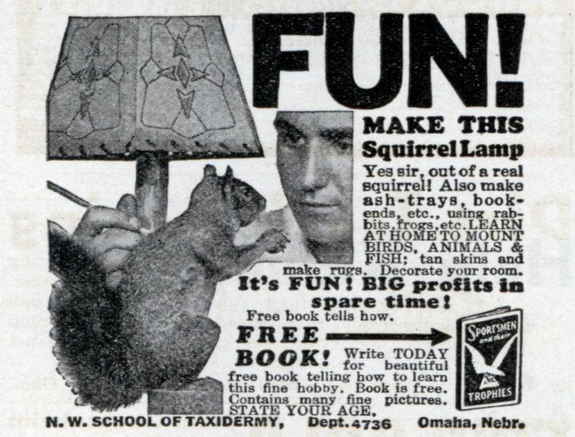 MAKE THIS Squirrel Lamp (Sep, 1933)
