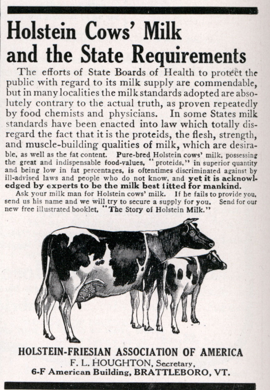 holstein's cow milk letter