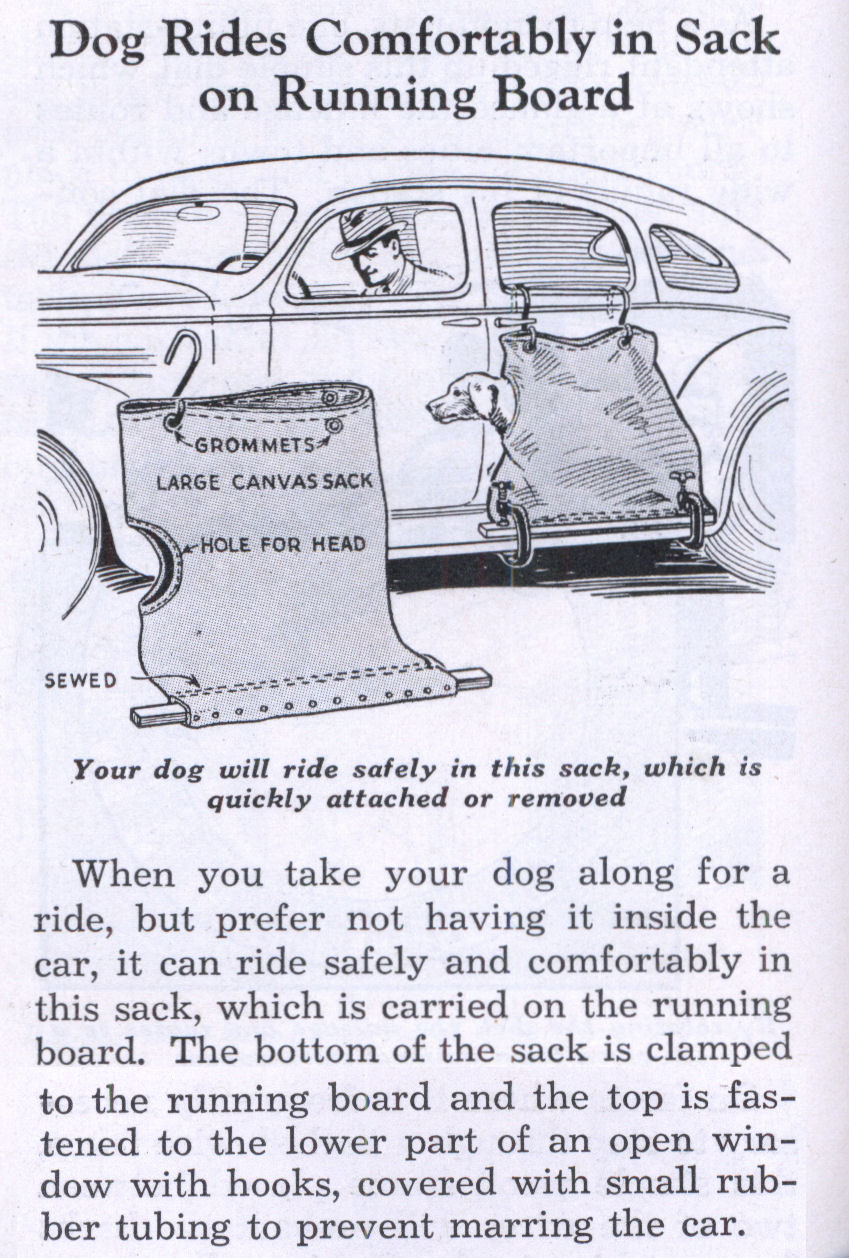 Dog Rides Comfortably in Sack on Running Board | Modern Mechanix