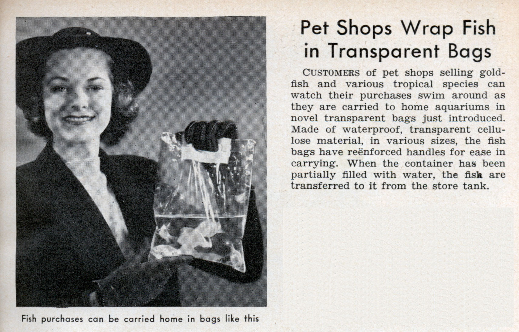 Pet shops wrap fish in transparent bags modern mechanix for Fish in a bag
