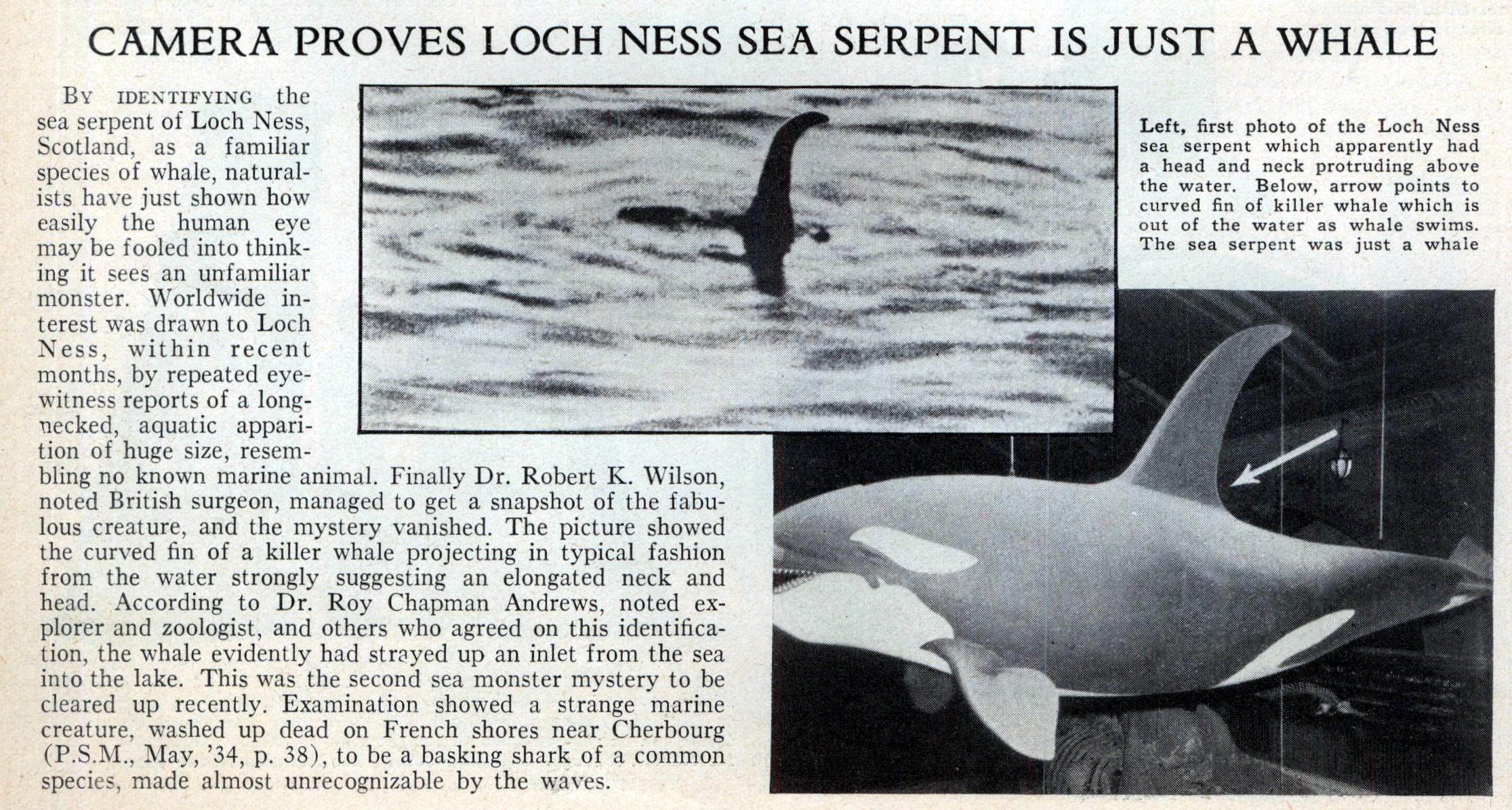 http://blog.modernmechanix.com/mags/PopularScience/7-1934/loch_ness_whale.jpg
