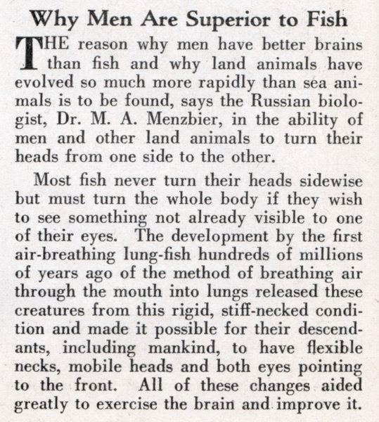 Why Men Are Superior to Fish