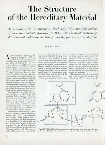 The Structure of the